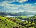 Tea plantations and river in hills near Munnar, Kerala, India Royalty Free Stock Photo
