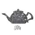 Tea pot decorated with hand drawn and herbs on white background. Royalty Free Stock Photo
