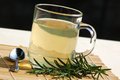 Tea with rosemary Royalty Free Stock Photography