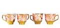 Tea sets close up isolated on white background Royalty Free Stock Photo