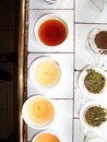 Tea tasting in a Tea factory Stock Photos
