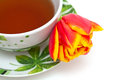 Tea time cup of and tulip Stock Image