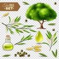 Tea Tree Set