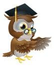 Teacher owl pointing Royalty Free Stock Photo