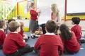 Teacher teaching maths to elementary school pupils Royalty Free Stock Photography
