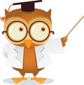 Teaching owl Royalty Free Stock Photos