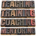 Teaching training coaching and mentoring a collage of isolated words in vintage letterpress wood type printing blocks Stock Photo