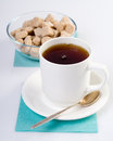 Teacup composition and sugar isolated closeup Royalty Free Stock Image