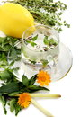 Teacup, herbs and lemon. Stock Photos