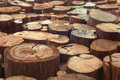 Teak wood stumps background with narrow focus Royalty Free Stock Photo