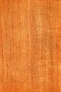 Teak (wood texture) Royalty Free Stock Photo