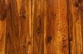 Teak wood texture pattern background