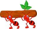 Tím z mravce návrh maľby nesie prihlásiť