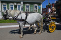 The  	team of horses with 	coachman and two children in small russian city Kolomna Royalty Free Stock Photo