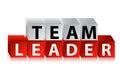 Team leader text mit roten würfeln Stockfotografie