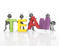 The team word with d cartoon ants concept Royalty Free Stock Photos