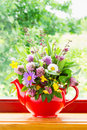 Teapot with bouquet of healing herbs and flowers Royalty Free Stock Photography