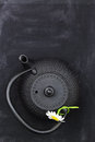 Teapot with chamomile on chalkboard top shot and copy space Royalty Free Stock Photography