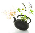 Teapot with fresh herbs bouquet of various and splash isolated Royalty Free Stock Image