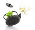 Teapot with fresh herbs green and tea splash isolated Royalty Free Stock Image