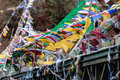 Tear colorful Tibetan prayer flags waving and swaddled with bridge over frozen river at Thangu and Chopta valley in winter. Royalty Free Stock Photo