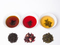 Teas brewed colors Stock Images