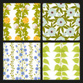 Technical plants with leaves, pods and flowers. Seamless patterns