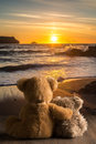 Teddies Watching The Sunset Royalty Free Stock Photo