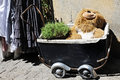 Teddy in baby buggy bear an old Stock Photos