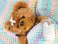 Teddy with bandage sick bear in a bed Stock Images