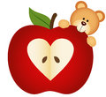 Teddy Bear on Apple Royalty Free Stock Photo