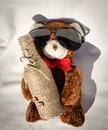 Teddy bear with bottle photo of a sun glass and a Stock Photos