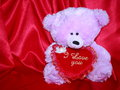 Teddy bear card with red love heart - stock photo Royalty Free Stock Image