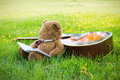 Teddy bear on classical guitar on field. Royalty Free Stock Photo