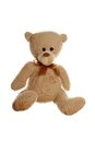 Teddy bear close up of a brown isolated on white background Stock Photo