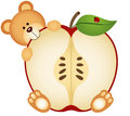 Teddy Bear Eating Apple Sliced Royalty Free Stock Photo