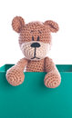 Teddy bear with empty green label sign Royalty Free Stock Photography