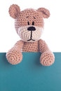 Teddy bear with empty green label sign Royalty Free Stock Images