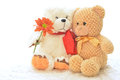 Teddy bear with flower two bears Stock Images