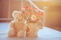 Teddy bear and flowers in the pot still life with pink watering can with soft back light Royalty Free Stock Photos