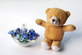 Teddy bear and forget me nots with a bouquet of blue symbol of remembrance in a small glass basket Stock Image
