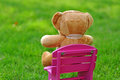 Teddy bear in the garden sitting on a chair Royalty Free Stock Image