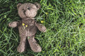 Teddy bear on the grass Royalty Free Stock Photo