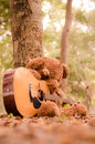 Teddy bear with the guitar Royalty Free Stock Photos
