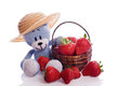 Teddy bear with hat and fresh strawberries cute blue Stock Photography
