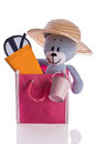 Teddy bear with hat suncream and sunglasses in a bag blue Stock Photo