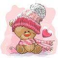 Teddy Bear in a knitted cap
