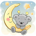 Teddy Bear on the moon
