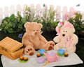 Teddy Bear Picnic Stock Image