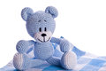 Teddy bear on picnic blanket blue and white Stock Images